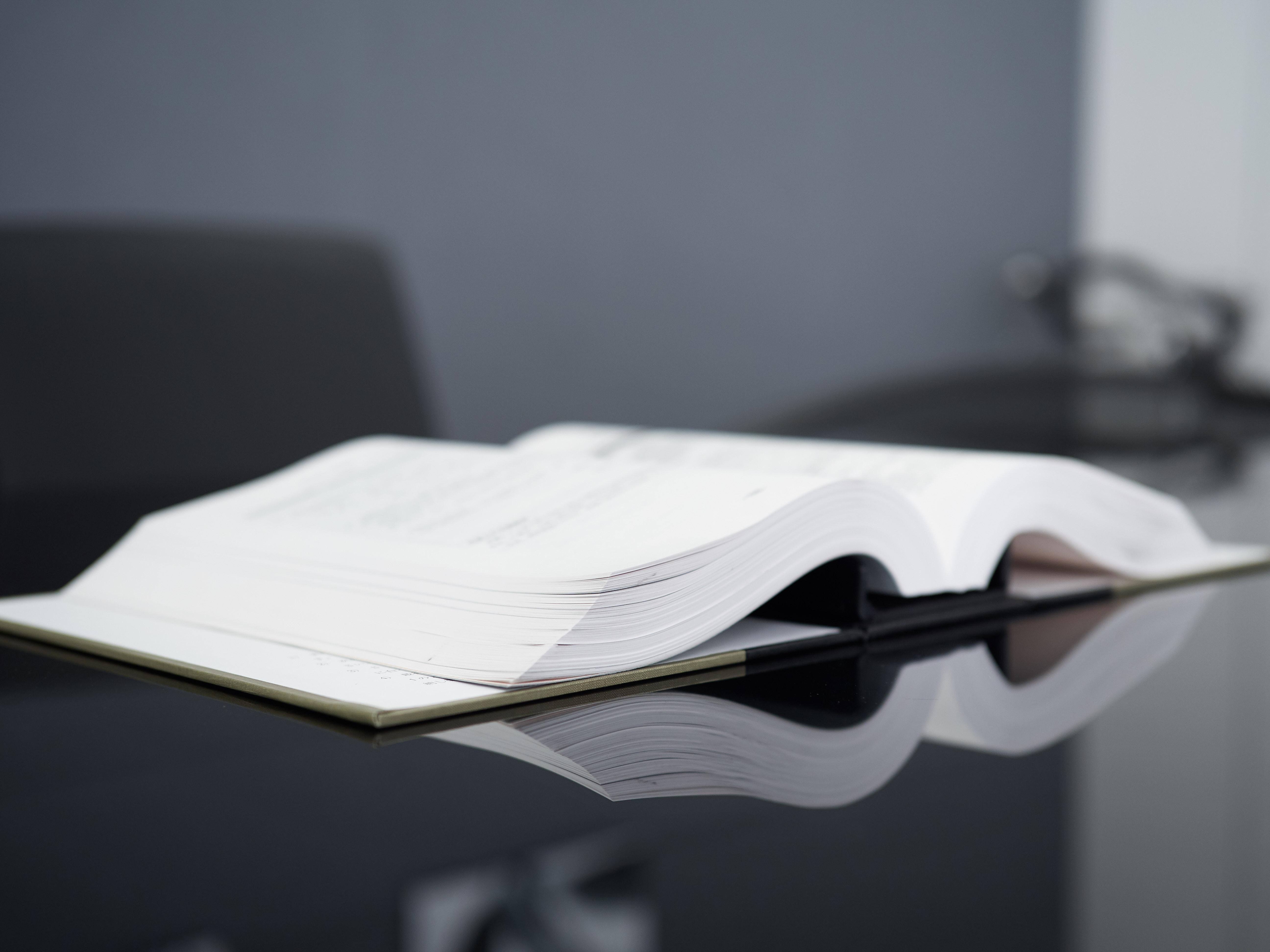 ものづくり補助金の採択要件(審査項目)